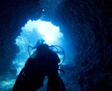 Relato de Mergulho em Fernando de Noronha com fotos