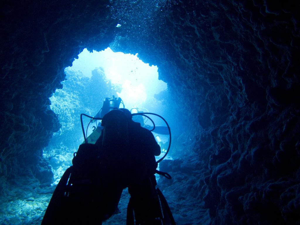 mergulhar fernando de noronha
